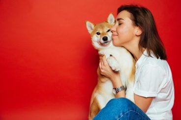 errores que cometemos con el perro sin darnos cuenta