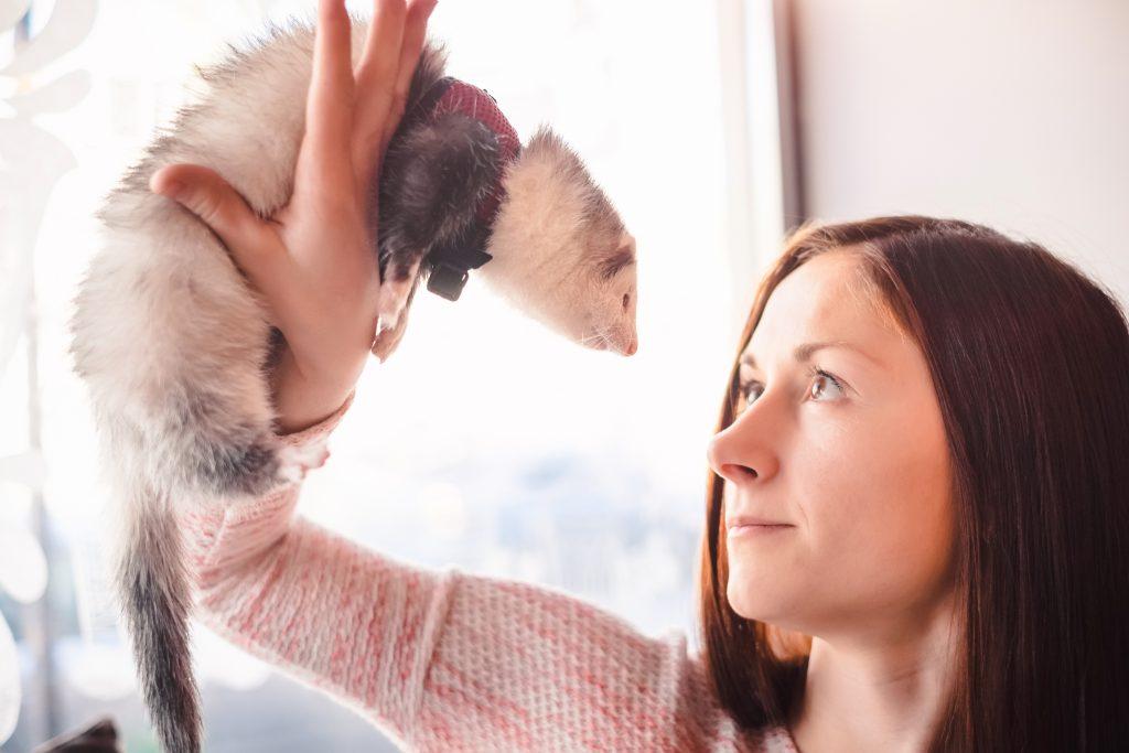 qué hacer con tu mascota en vacaciones quedarse al cuidado de un conocido
