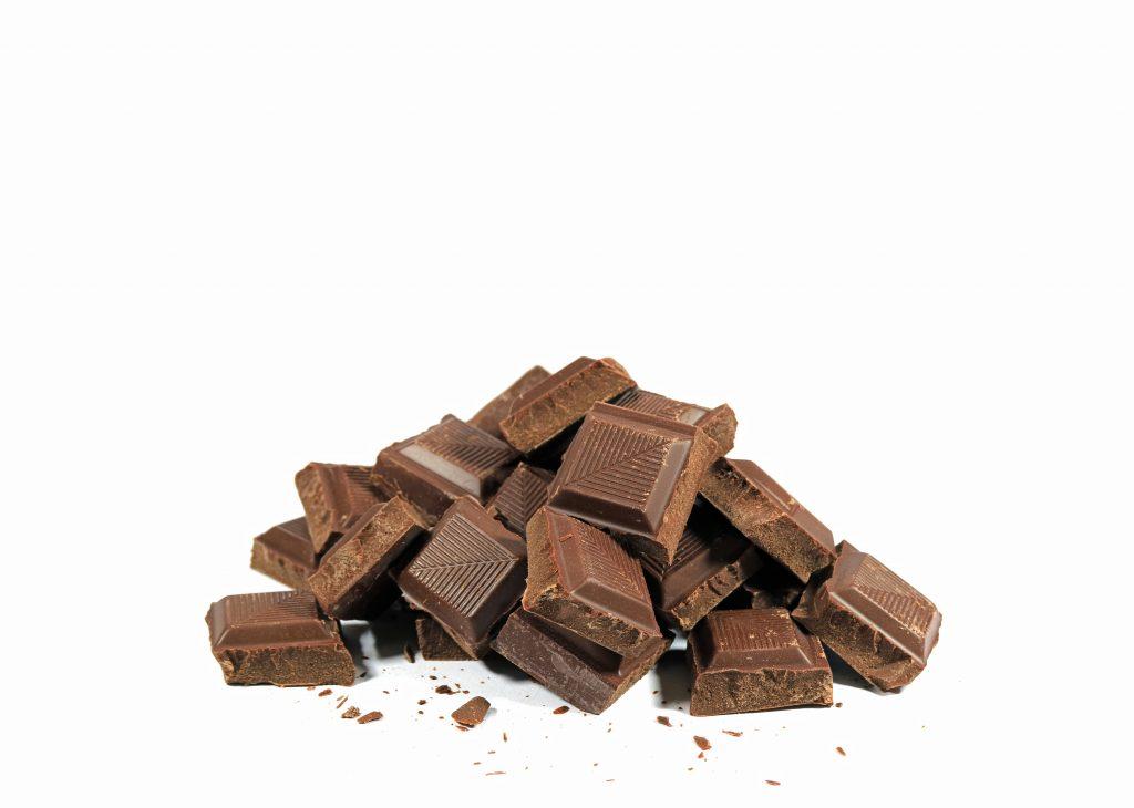 el chocolate es uno de los alimentos prohibidos para loros