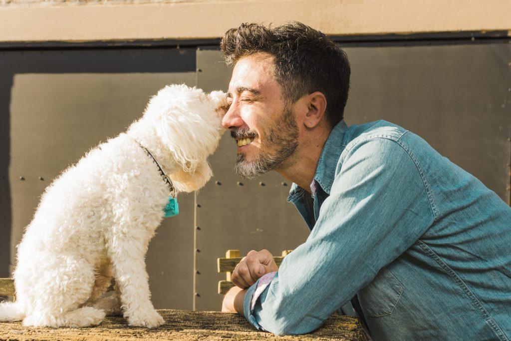 el síndrome de williams-beuren hace que los perros sean más cariñosos