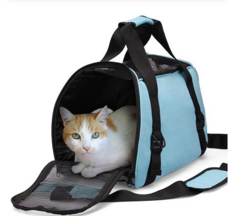 el transportín de tu mascota