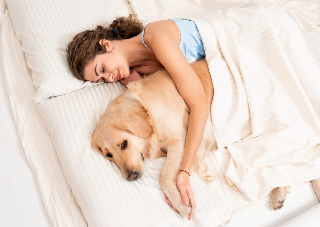 lo bueno de dormir con tu mascota