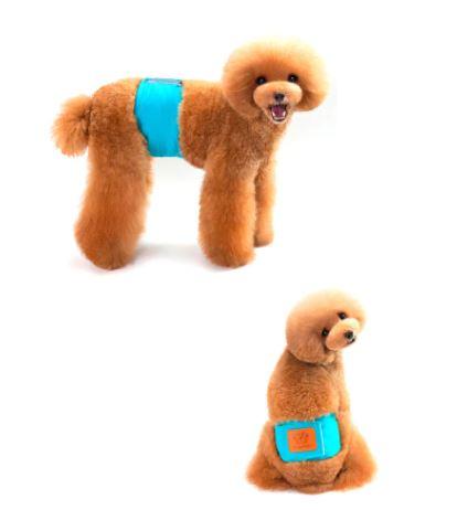 tipos de pañales para perros el cinturón