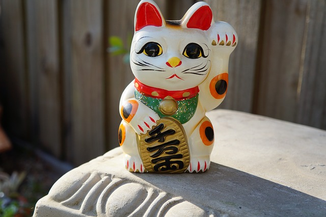 Maneki-neko es un gato Bobtail japonés