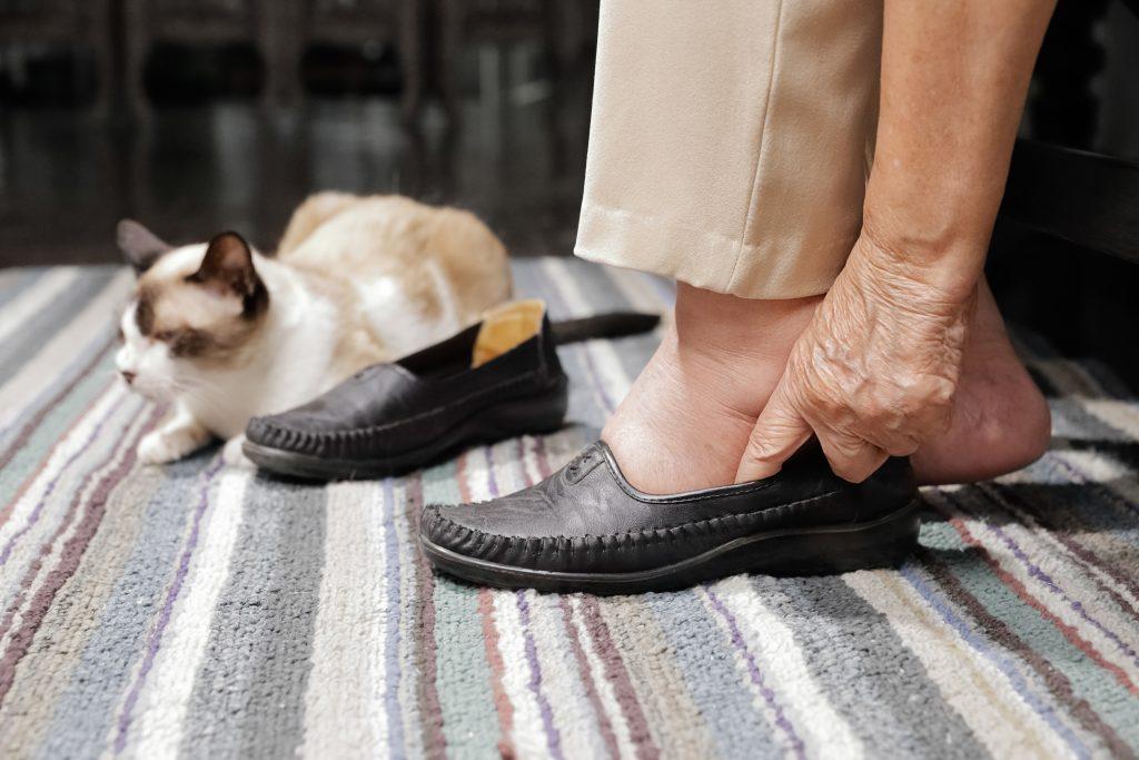 por qué mi gato me muerde los tobillos