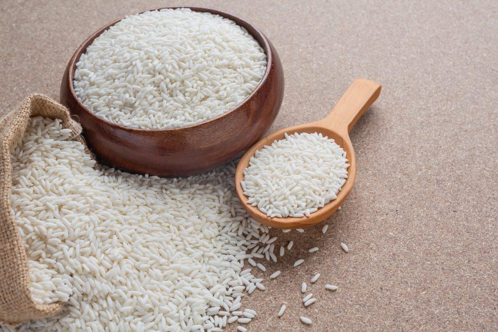 El arroz es bueno para los perros y tiene beneficios
