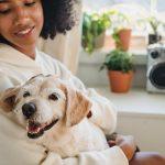 Manejo del perro epiléptico