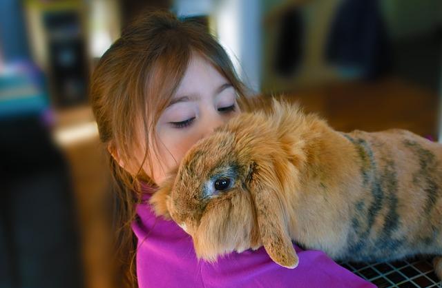 claves para enseñar a los niños a cuidar de las mascotas