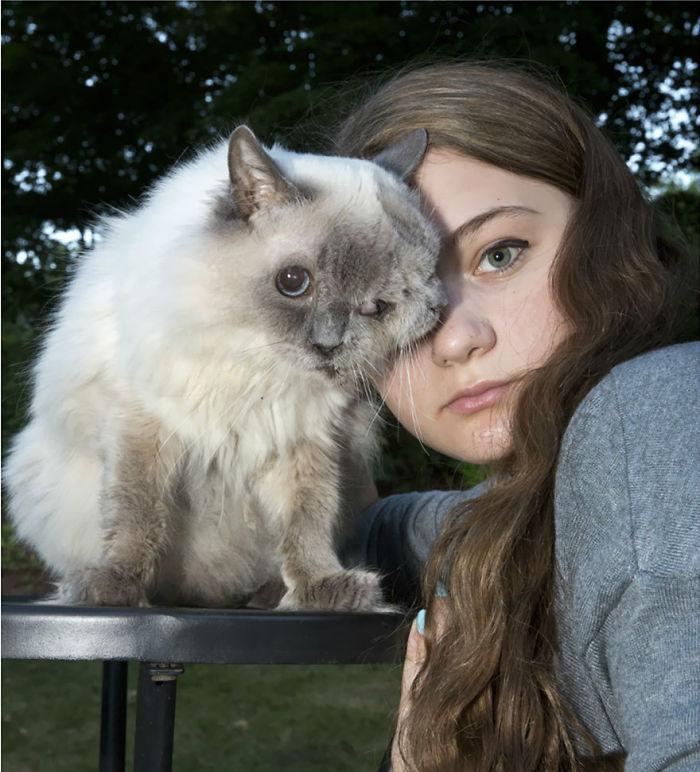 gato con dos caras