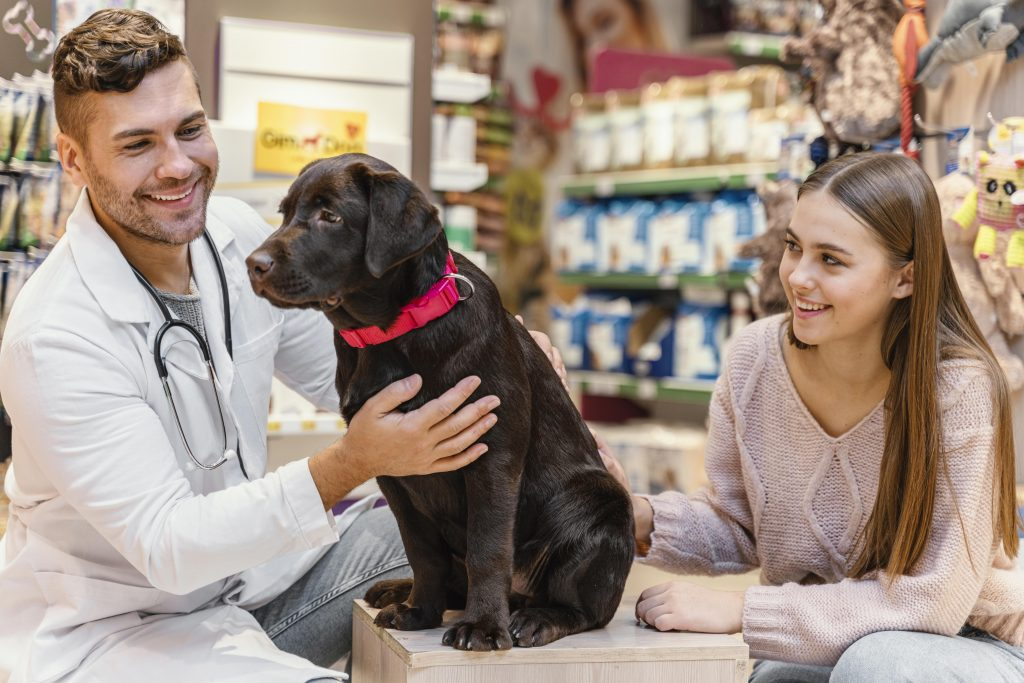 el trato del veterinario hacia ti es importante