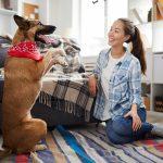 errores al adiestrar a un perro