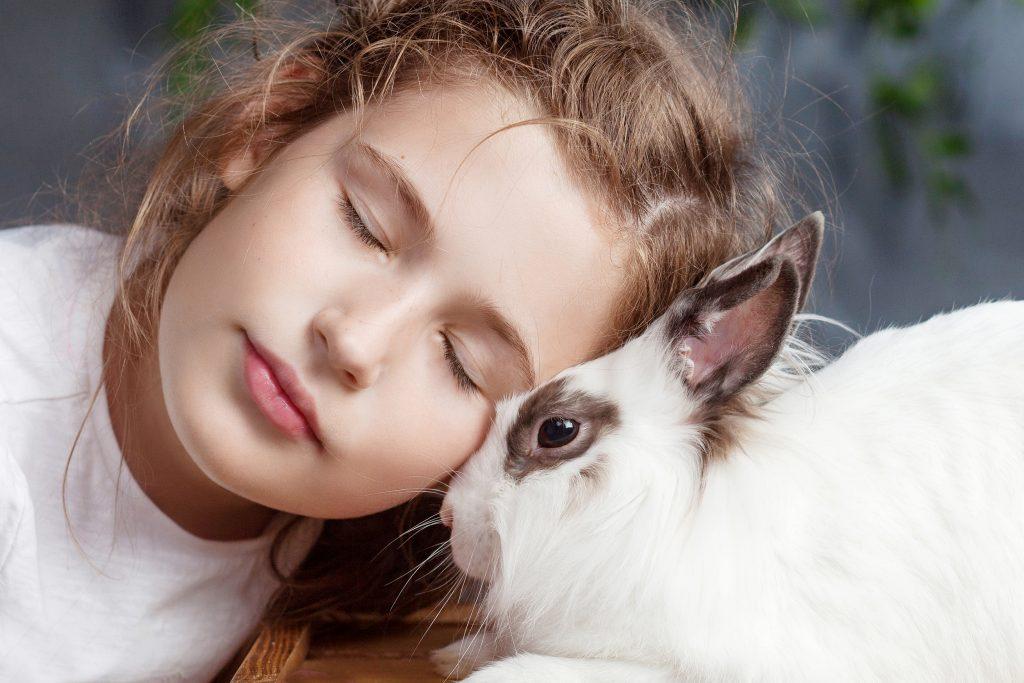 la terapia con conejos es muy efectiva