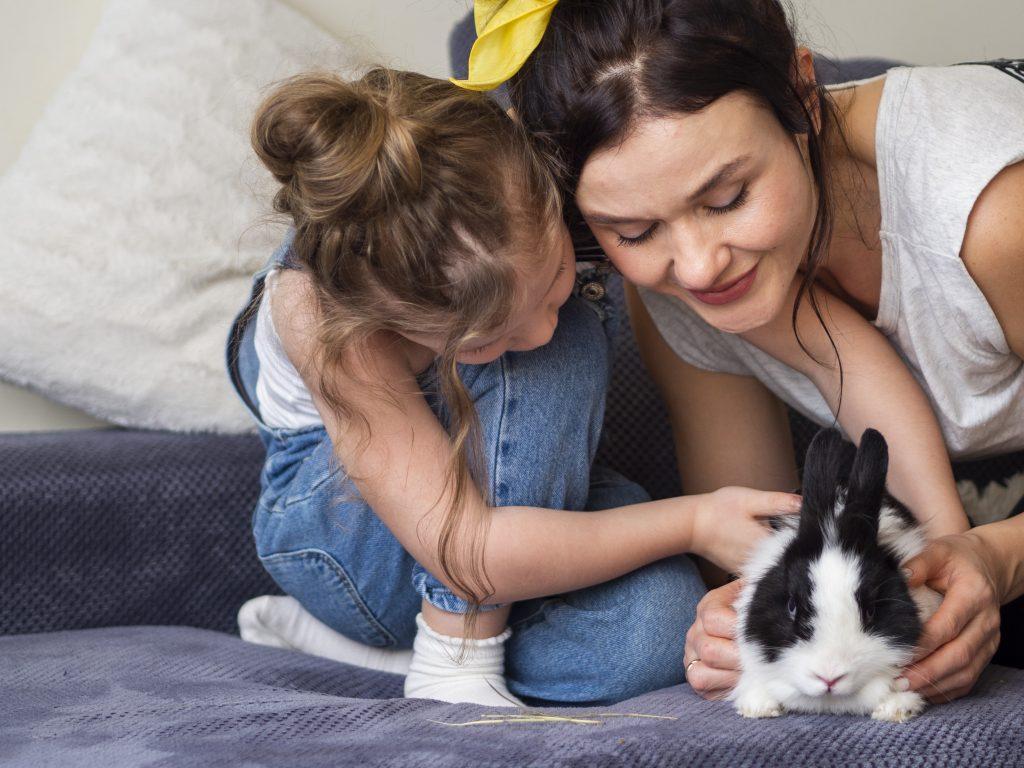 la terapia con conejos tiene muchas ventajas