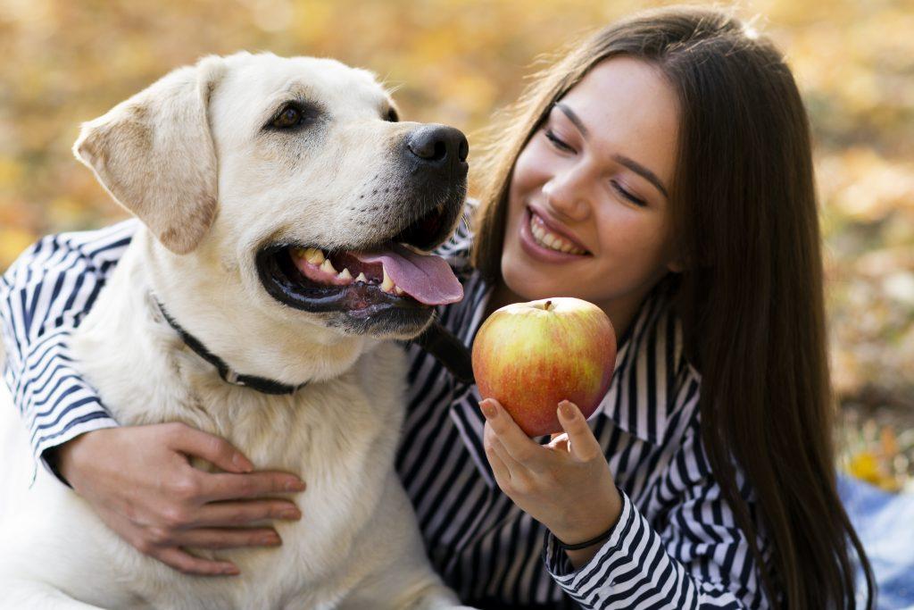 los perros pueden comer manzana con moderación
