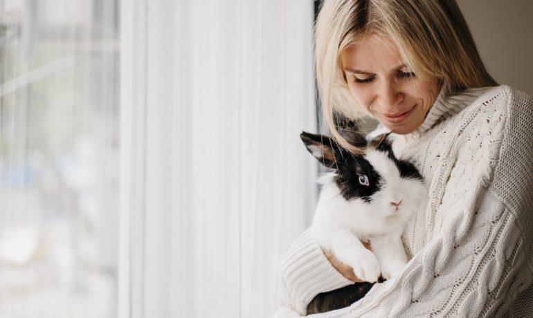 terapia con conejos