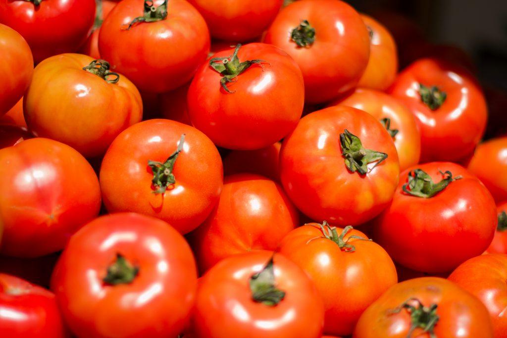 el tomate puede tener beneficios para los perros
