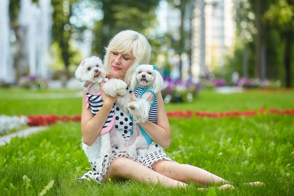 humanizar a las mascotas puede convertirlas en perros velcro