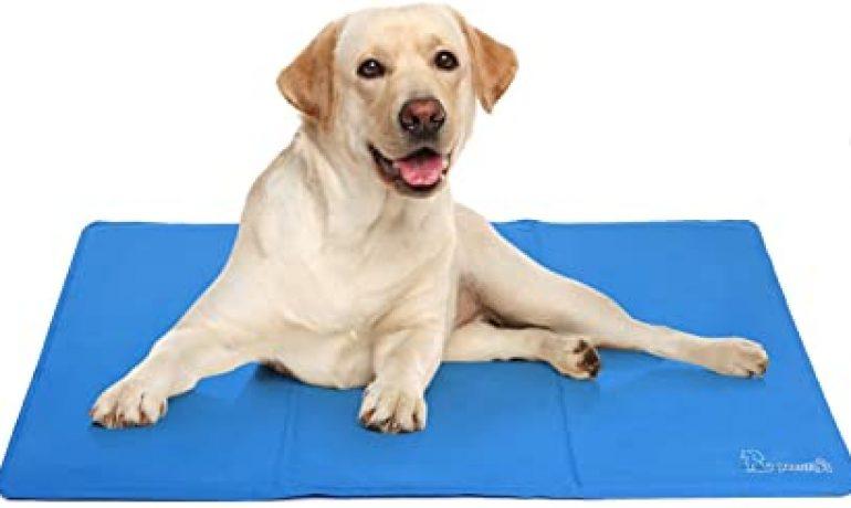 alfombra refrescante para perros
