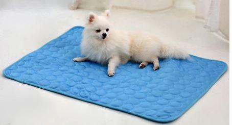 beneficios de la alfombra refrescante para perros