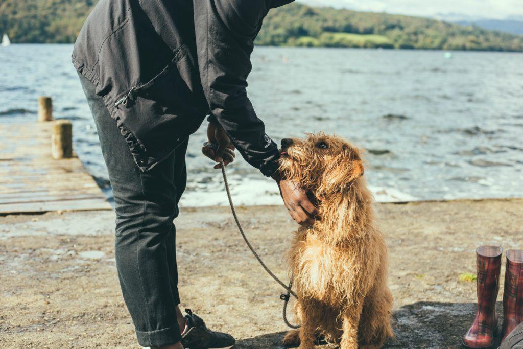 Ganar lealtad de los clientes de tu clínica veterinaria