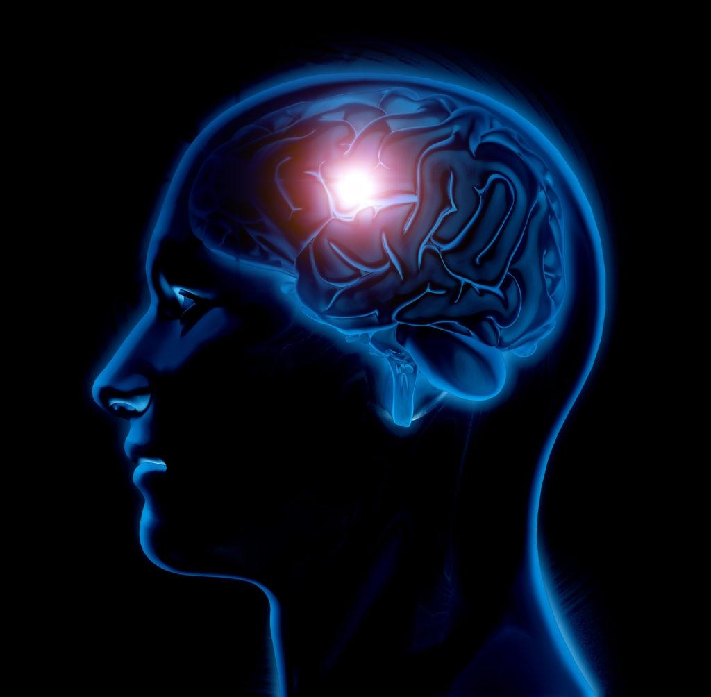 Neuromarketing en tu Clínica Veterinaria