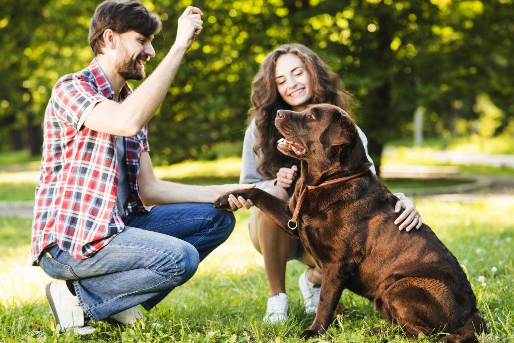El público objetivo de mi clínica veterinaria