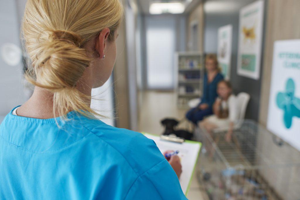 el contenido personalizado en las redes y web de tu veterinaria da confianza
