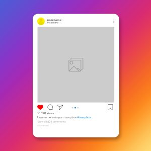consejos para conseguir seguidores en Instagram para tu veterinaria